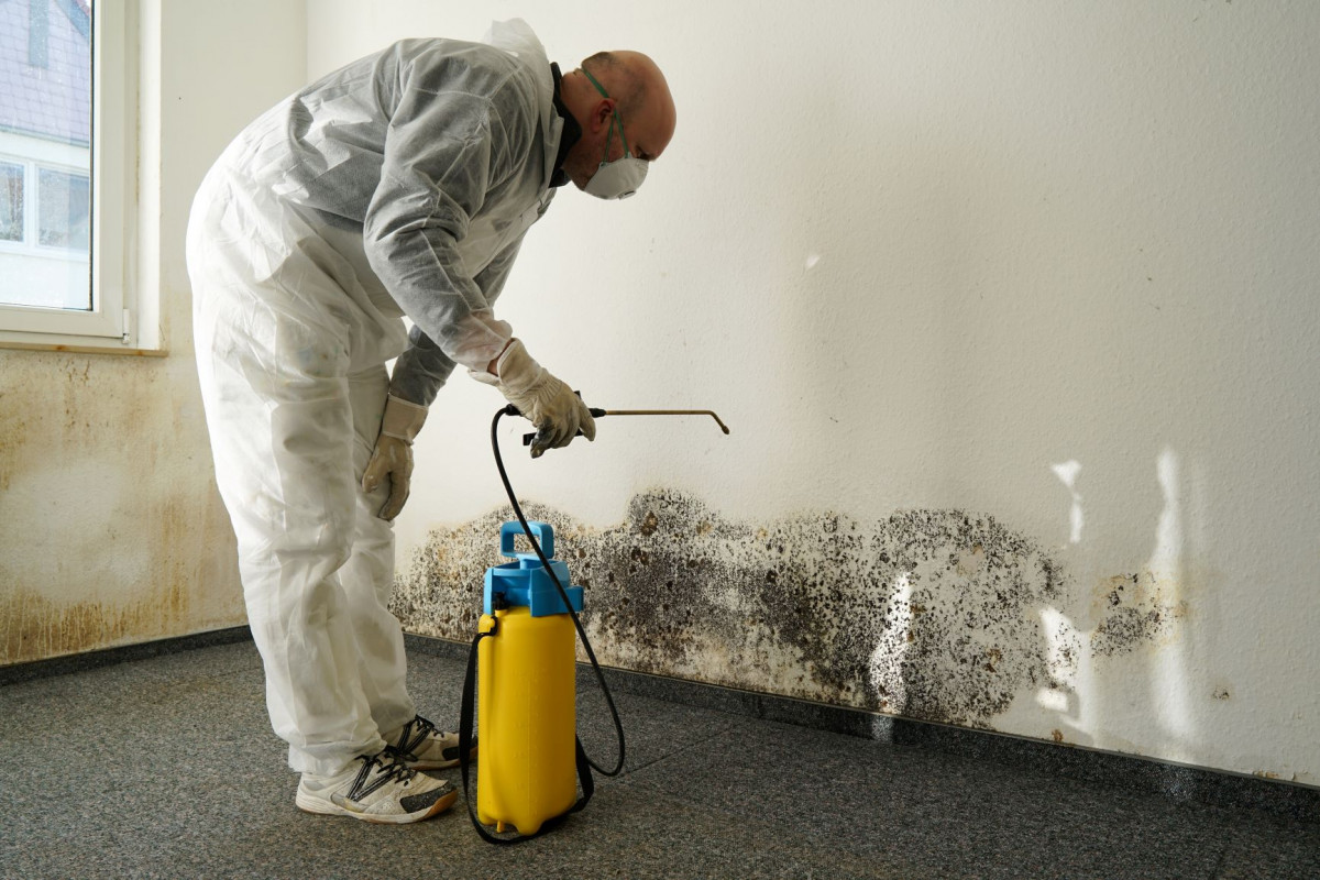 Mold Remediation - Leave It to the Professionals.